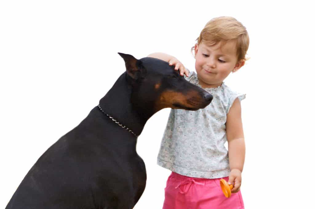 doberman and children