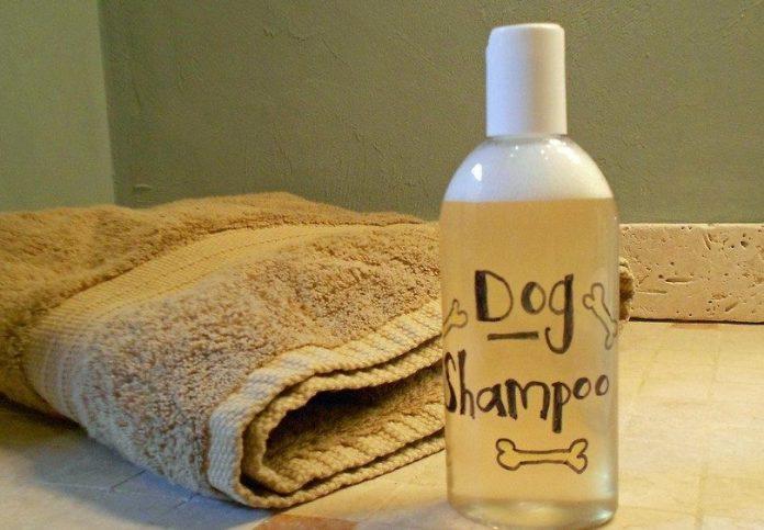 Dog Shampoo DIY