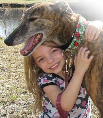 Greyhound Behavior with children