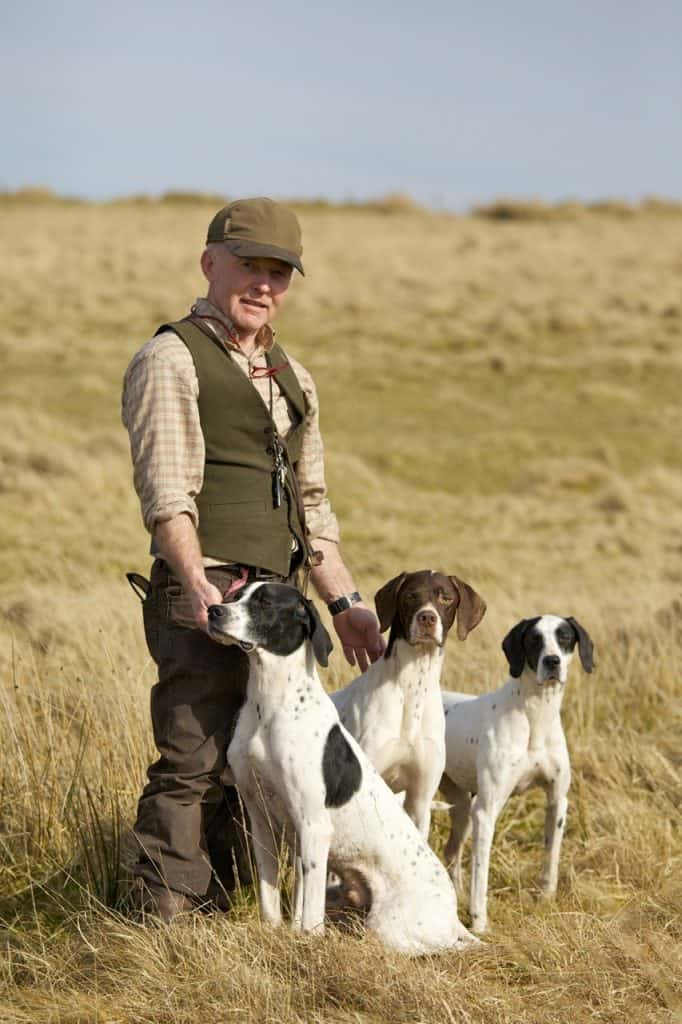 About English Pointers