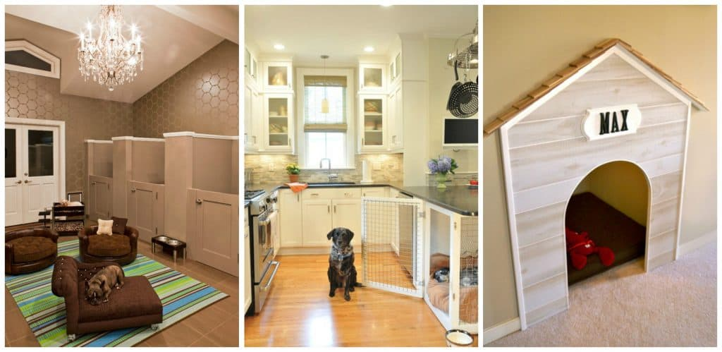 Make Your House Dog-Friendly