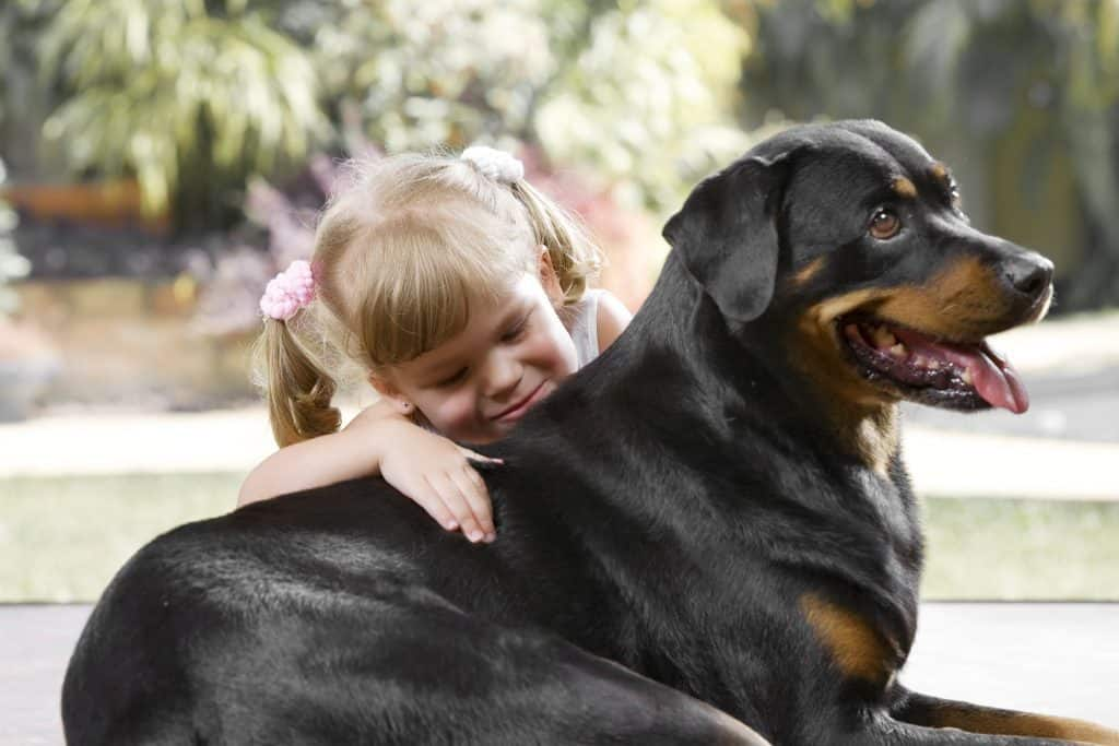 This huge breed is kind and gentle with children
