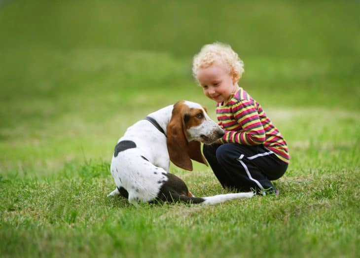 Basset Hound - best dogs for kids