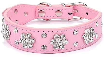 Didog - Cute PU Leather Dog Collar