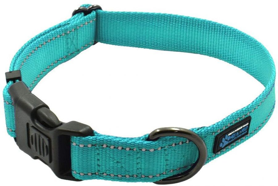 Max and Neo NEO Nylon Buckle Reflective Dog Collar