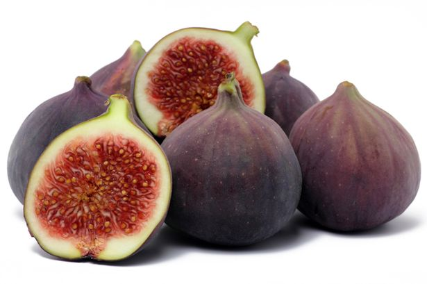 In What Quantity Can Dogs Eat Figs?