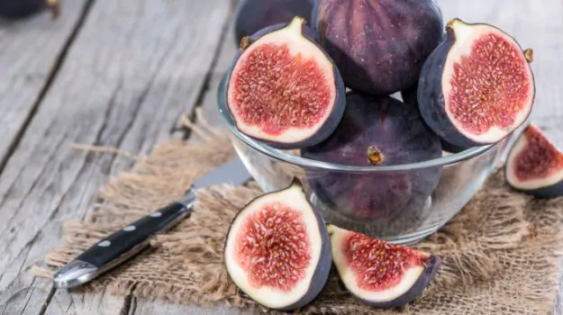 Can Dogs Eat Figs Having Health Benefits