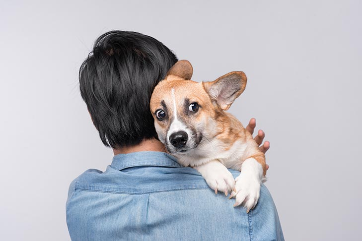 Treatment for Dog Fears