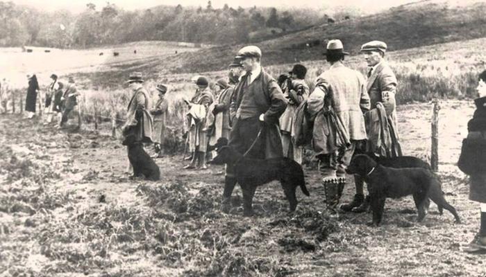 labrador history