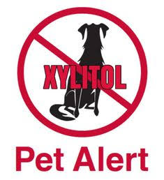 Xylitol toxic for dogs