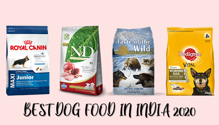 Best Dog Food in India 2020