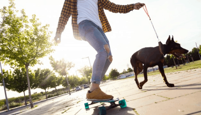 skater with doberman
