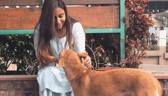Indian street dog owner