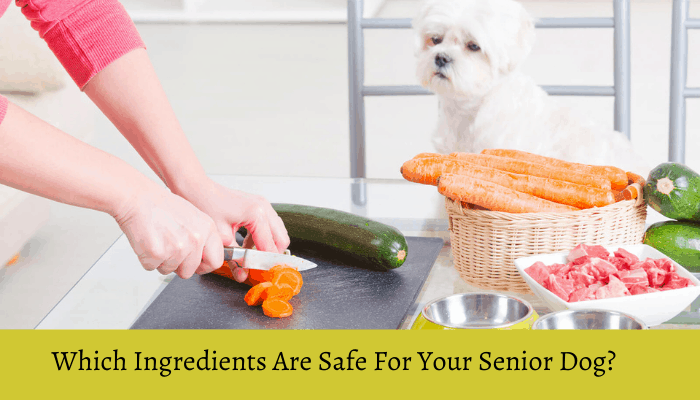 Senior Dog Food Ingredients