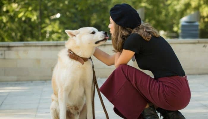 An akita dog licking the chin of a woman wearing black hat, black top and maroon pants. The background is blur with trees and a water tank.
