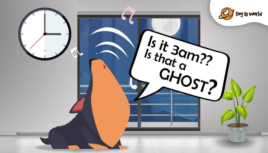 A cartoon graphic of a dog howling with a clock striking three in the background. There is a balcony, moon and a plant in the background.